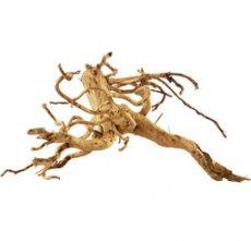 Allerlei Holz für Dein Aquarium Wurzeln