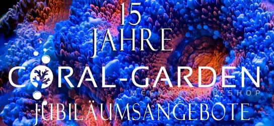 Jubilaeumsangebote 15 Jahre Coral Garden