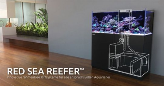 Red Sea Reefer Meerwasseraquarium Komplett