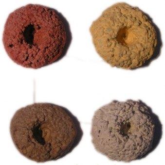 Ablegersteine verschiedene Farben