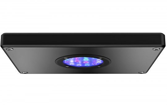 Aqamai LRS Reef Light 50 W schwarz