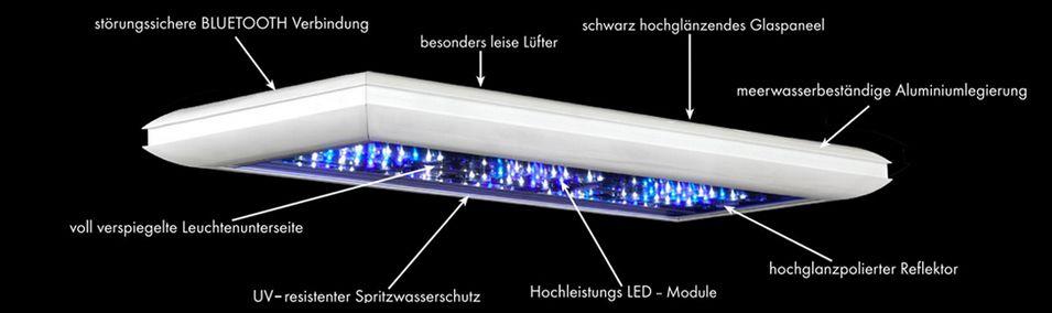 giesemann futura s marine 2 module led beleuchtung in giesemann futura s. Black Bedroom Furniture Sets. Home Design Ideas
