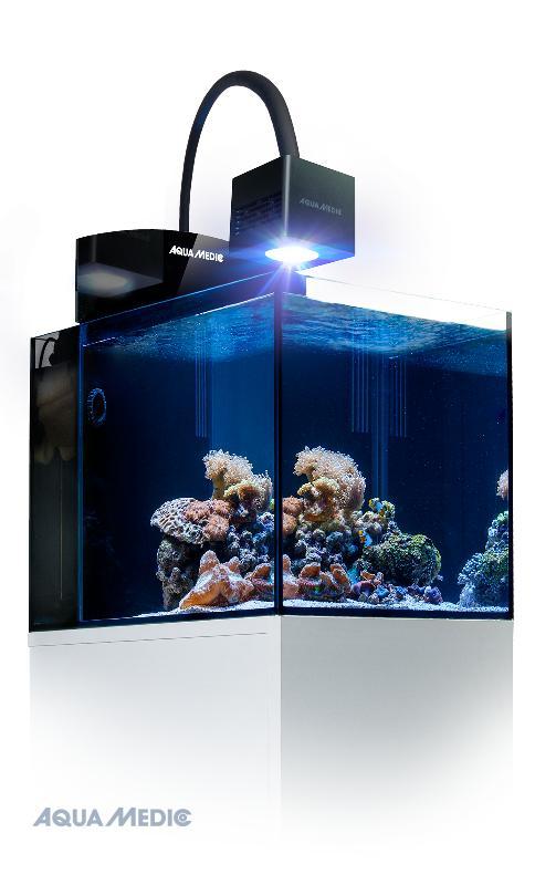aqua medic blenny qube meerwasseraquarium komplett in aquarien. Black Bedroom Furniture Sets. Home Design Ideas
