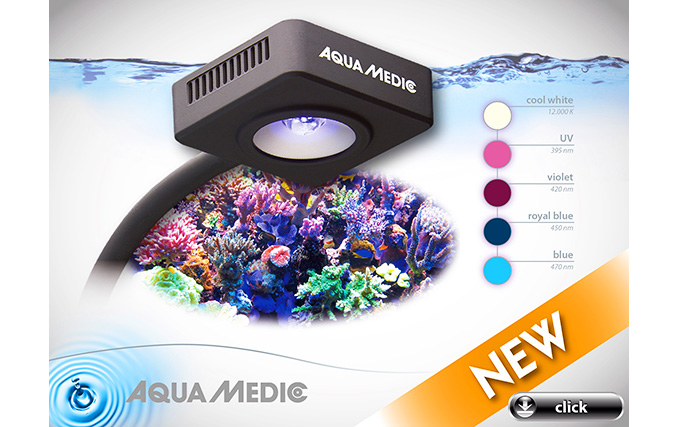 aqua medic qube 30 led spot in aqua medic. Black Bedroom Furniture Sets. Home Design Ideas