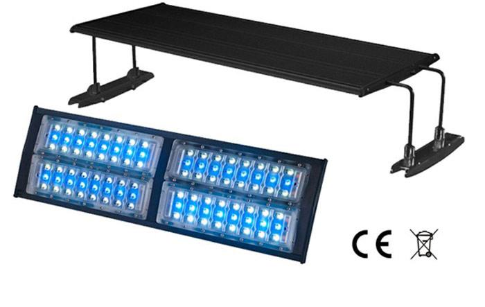 meerwasser led beleuchtung dekoration bild idee. Black Bedroom Furniture Sets. Home Design Ideas