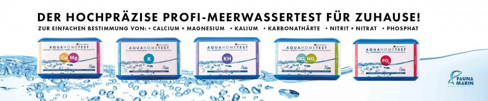 Bild von den neuen Fauna Marin Wassertests